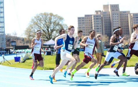 Gray Bees Look Strong Going Into Penn Relays