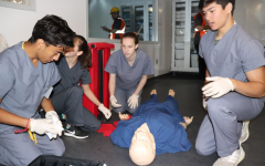 Busy Bees : Learning a Medical Response