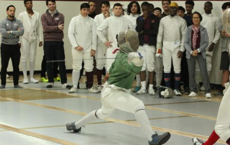 Fencing: Many High Points